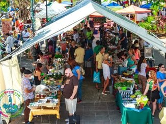 Sunday Morning at the Rincón Farmers Market